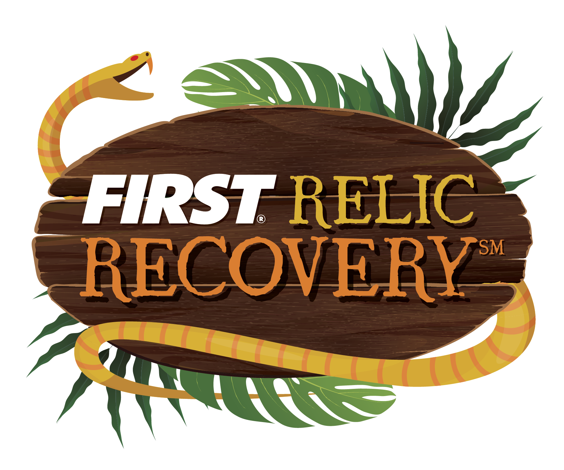 FIRST FTC RelicRecovery17 18 Color